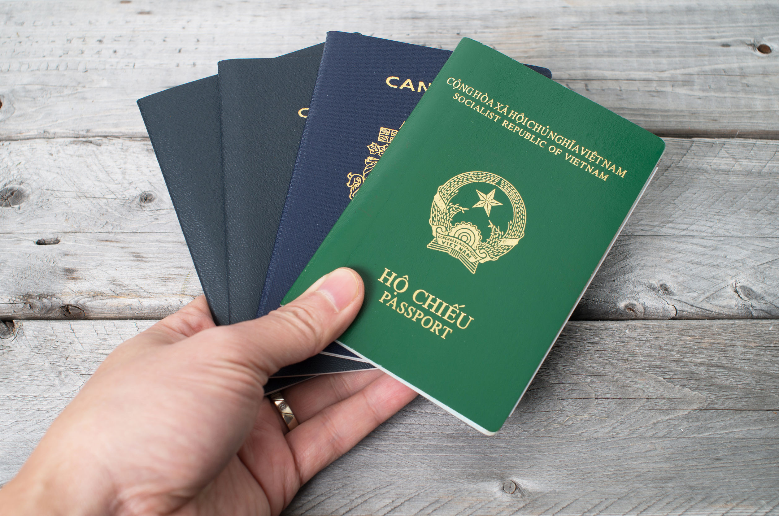 an overview of dual citizenship in canada